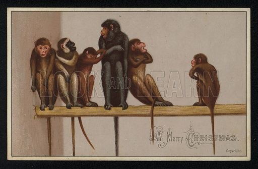 Group of monkeys, Christmas greetings card, late 19th century.