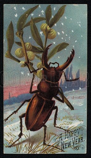 Stag beetle carrying mistletoe in a wintry scene, Christmas greetings card
