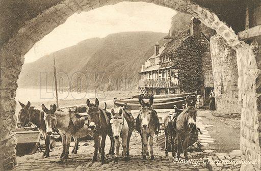 Donkeys at Clovelly, Devon