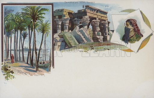 Egyptian scenes: palm trees on the banks of the Nile at Gezira, Cairo, and the Temple of Kom Ombo. Postcard, early 20th century.