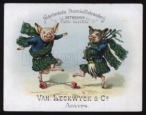 Dancing pigs wearing Scottish Highland costume. Trade card, early 20th Century.