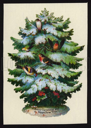 Birds in a Christmas tree, Christmas greetings card.