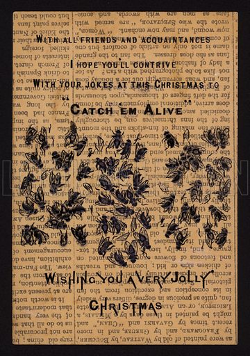 Dead flies, Christmas greetings card.