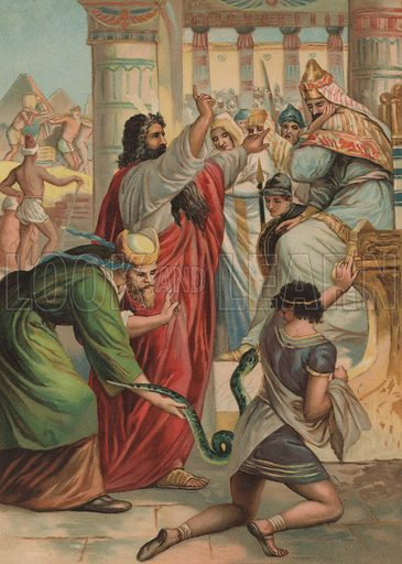 The rod of Moses turning into a snake in the court of Pharaoh. Illustration from My Bible Picture Book (SW Partridge & Co, London, c1908).