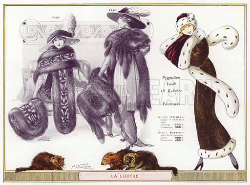 Women and Furs, Otter