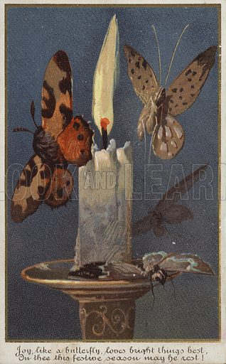 Butterflies around a burning candle.