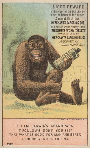 I am Darwin's Grandpapa.  Trade card for Merchant's Gargling Oil, etc.