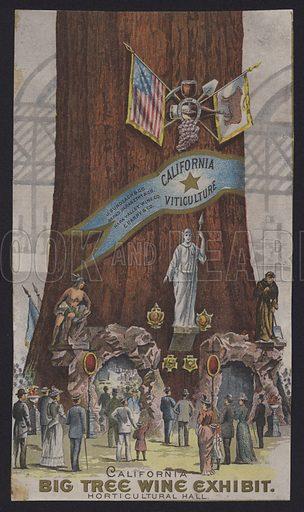 California Big Tree Wine Exhibit.  Trade card.
