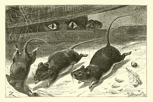 Three little mice. Illustration for National Nursery Rhymes set to music by J W Elliott (Novello, Ewer & Co, c 1880).