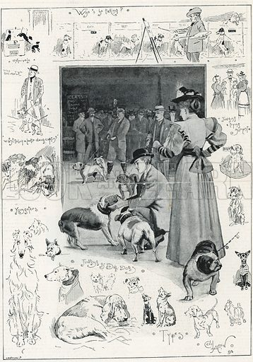 The Kennel Club's exhibition of dogs at the Crystal Palace. From the Illustrated London News, 28 October 1893.