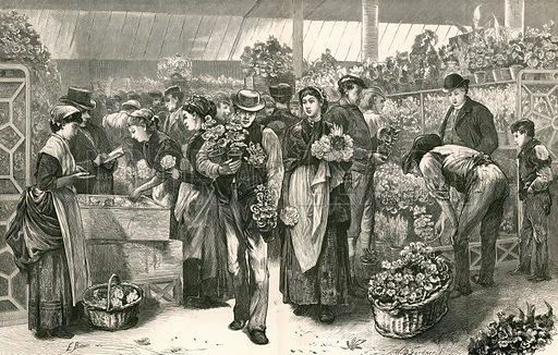 The flower market, Covent Garden, London