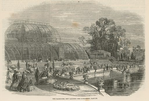 The Palm House, Kew Gardens, London; from The Illustrated London News, 6 August 1859.