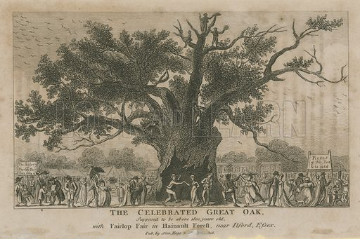 The celebrated Great Oak, supposed to be above 1800 years old
