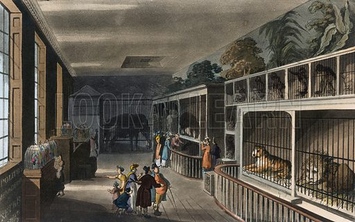 Polito's Royal Menagerie, Exeter Change, Strand. Published 1812. Original colours digitally restored.