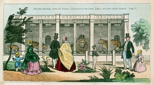 The new building, under the terrace, constructed for the lions, tigers and other similar animals.