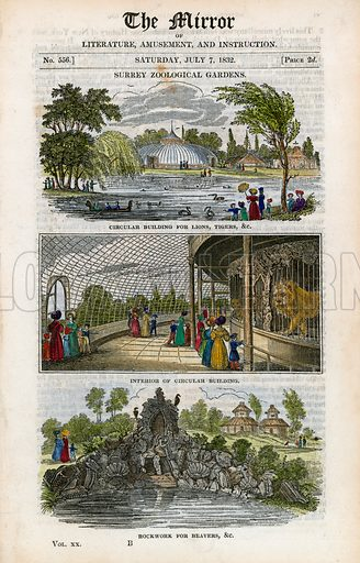 Surrey zoological gardens. From The Mirror 7 July 1832.