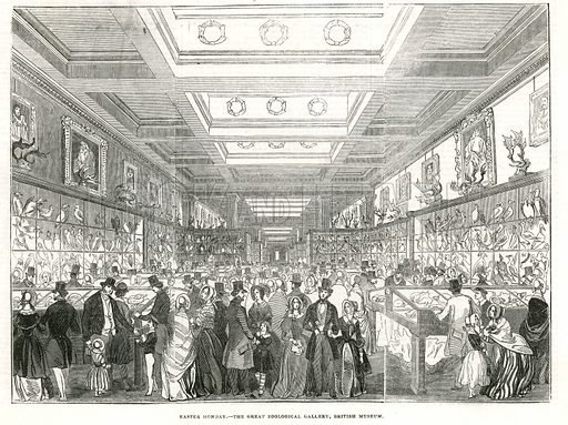 Easter Monday – the Great Zoological Gallery, British Museum. From the Illustrated London News, 29 March 1845.