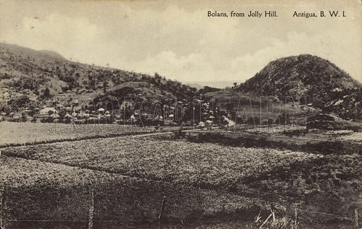 Bolans, from Jolly Hill, Antigua.