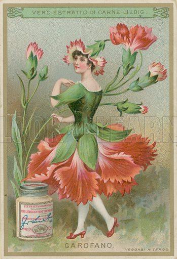 Carnation Flower Girl