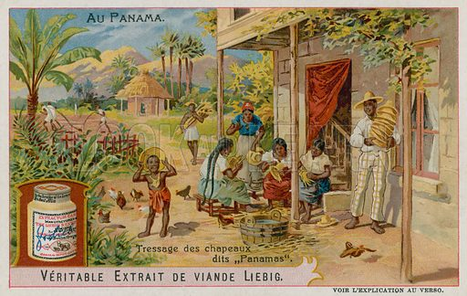 Panama Hats Being Made.  Liebig card, late 19th century/early 20th century.