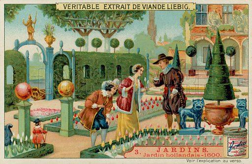 Dutch tulip garden, picture, image, illustration