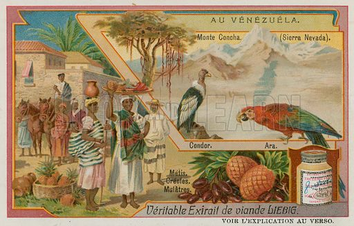 Sierra Nevada with a Condor and a Parrot and Mixed Descent Natives. Liebig card, late 19th century/early 20th century.