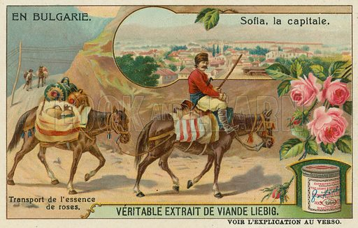 Sofia and a trader transporting rose essence.  Liebig card, late 19th century/early 20th century.