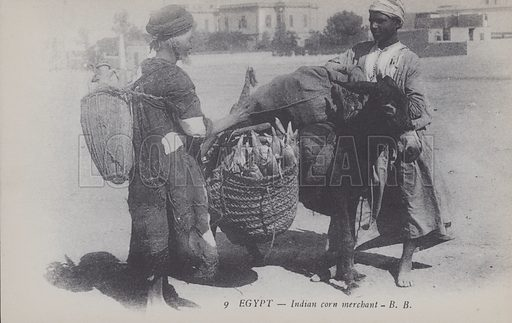 Indian corn merchant in Egypt. Postcard, late 19th or early 20th century;.