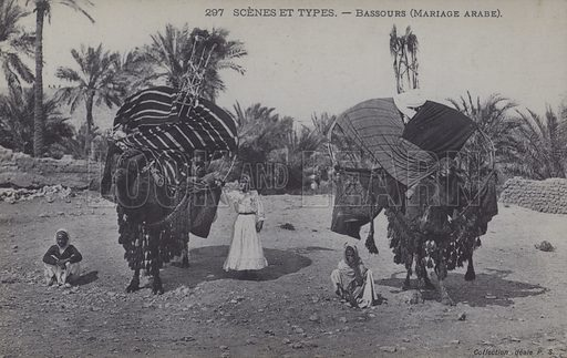 Camels at an Arabian wedding. Postcard, late 19th or early 20th century;.