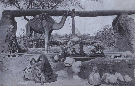 Women and children at the shadoof, a mechanism used for bringing water up from a well. Postcard, late 19th or early 20th century.