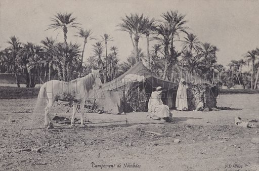 Camp of nomadic Arabs, possibly Bedouin, North Africa. Postcard, late 19th or early 20th century.