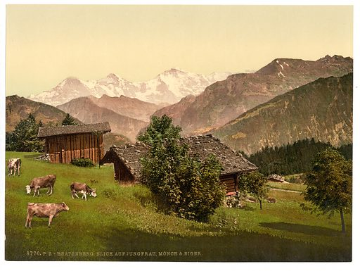 Beatenburg (i.e., Beatenberg), view of Jungfrau, Monch and Eiger, Bernese Oberland, Switzerland. Date between ca. 1890 and ca. 1900.