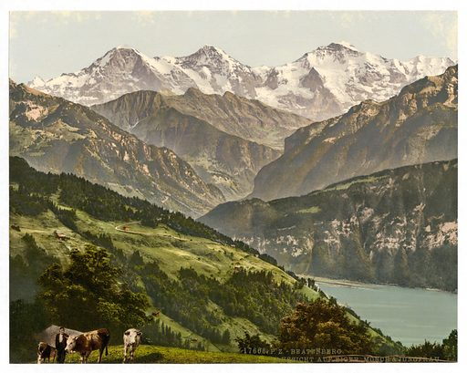 Beatenburg (i.e., Beatenberg), view of Jungfrau, Monch and Eiger, Bernese Oberland, Switzerland. Date between ca. 1890 and ca. 1900.