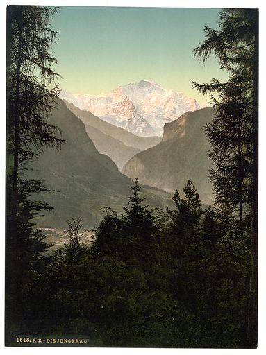 Interlaken, the Jungfrau, from the Rugen, Bernese Oberland, Switzerland. Date between ca. 1890 and ca. 1900.