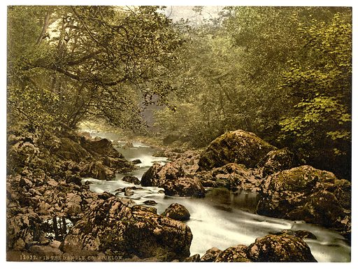 In the Dargle. County Wicklow, Ireland. Date between ca 1890 and ca 1900.