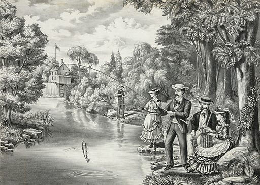 American sporting scene – trout fishing