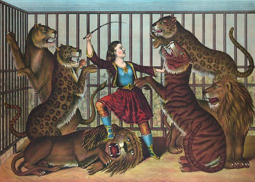 The lion queen. Print showing a woman lion-tamer in a cage with several lions and tigers