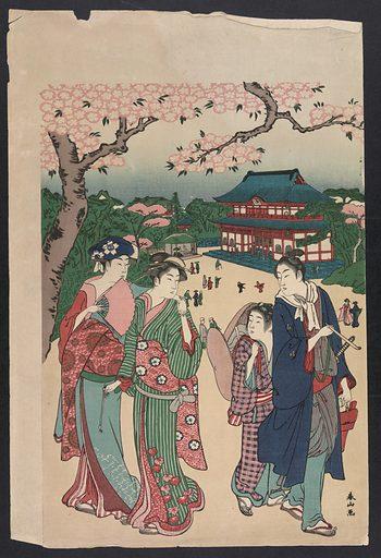 Cherry blossom viewing at Ueno