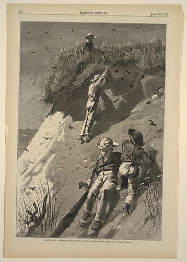 Four boys stealing eggs from sand swallows' nests. At top center, one boy is sitting on the bluff stealing eggs, while three boys climb the dune below. One boy is pulling on an old shirt that the boys are using to collect eggs. Made in: USA. Date: 1870s. Record ID: chndm_1947-4-31.