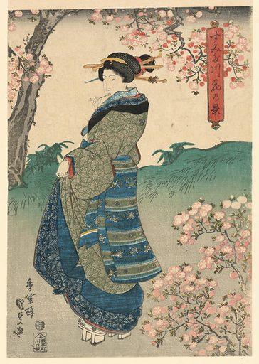 Woman viewing Cherry Blossoms on the Bank of the Sumida River (Sumidagawa hana no kei)