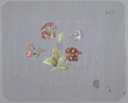 Four clusters of flowers and foliage in various colors and sizes at center of page on gray ground. Clockwise from top: pink cluster of flowers and foliage facing away from viewer and to left, purple flower with foliage facing away from viewer and to right, cluster of maroon and yellow flowers and foliage facing towards viewer and to right, pink and yellow pair of flowers with foliage facing left. Made in: France. Date: 1800s. Record ID: chndm_1968-107-68.