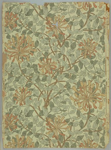 All-over pattern of meandering honeysuckle flowers and foliage. Printed on off-white ground. Designer: May Morris, British, 1862–1938. Made in: London, England. Date: 1880s. Record ID: chndm_1980-73-1.