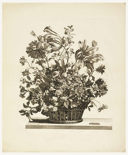 Tulips, anemones, peonies, roses, etc. in a flower basket. Two butterflies on flowers, caterpillar on lower right. Print maker: Jean-Baptiste Monnoyer, French, 1636–1699. Made in: France. Date: 1690s. Record ID: chndm_1938-58-865.