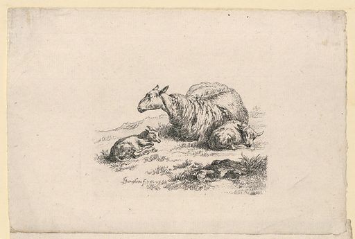 A ewe lying on the ground asleep, with two calves. From a suite of 8. Print maker: Nicolaes Berchem, Dutch, 1620–1683. Made in: Haarlem, Netherlands. Date: 1650s. Record ID: chndm_1957-41-31-a.