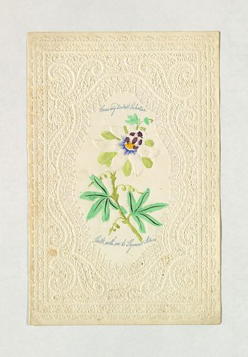 "In the center, an edelweiss. Inscribed in blue ink, above: ""Come my Dearest Valentine"" and below: ""Haste with me to Hymen's Shrine"". Embossed paper enframement. Made in: United States. Date: 1840s. Record ID: chndm_1961-105-33."