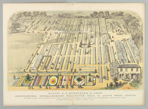 Messrs. E.G. Henderson & Son's Horticultural Establishment, Wellington Road, St. John's Wood, London. Made in: London, England. Date: 1850s. Record ID: chndm_1961-105-363.