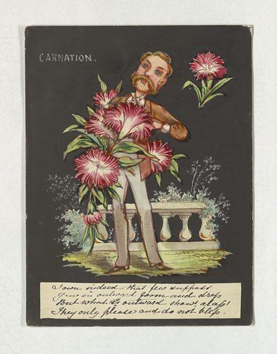 Friendship Greeting, Carnation