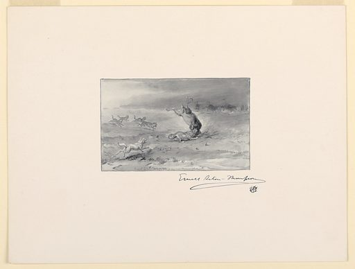 Trial proof for illustration. Wolves are seen felling cattle, while others flee in the distance. Made in: USA. Date: 1890s. Record ID: chndm_1957-58-59.
