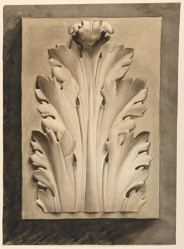 """Vertical rectangle. Rendering of an acanthus leaf; drawing from a cast in relief. Signed in ink, lower right: """"E. Silver."""" Also signed in ink on reverse. Made in: USA. Date: 1910s. Record ID: chndm_1953-31-21."""