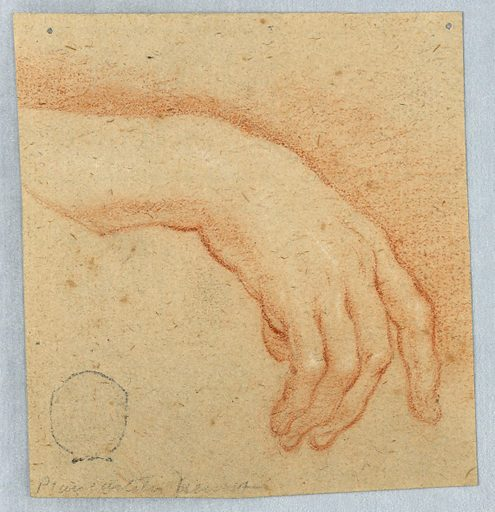 Vertical rectangle; study of a relaxed hand, hanging down, with the forefinger slightly extended. Made in: Italy. Date: 1700s. Record ID: chndm_1901-39-3053.